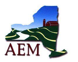 AEM Logo.jpg