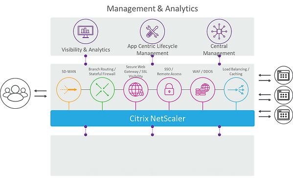 management & analytics 1.png