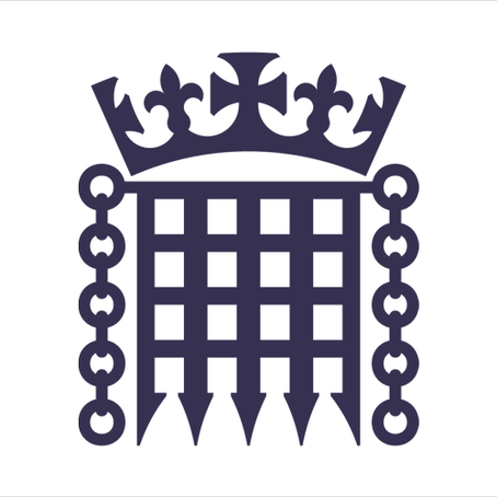 Drs Colloff and Flowe provide expertise to UK Parliament