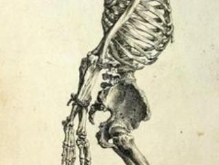 El jardín de huesos