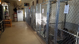 furnished kennels.jpeg