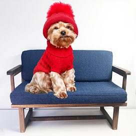 Deschamps Custom Pet Sofa