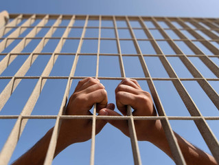 Будет ли амнистия по уголовным делам в России