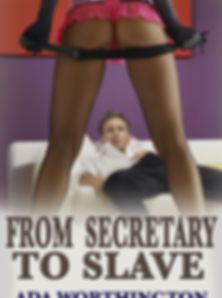 From Secretary to Slave Erotica.jpg