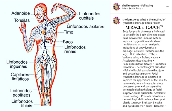Lymph Explanatiom.png