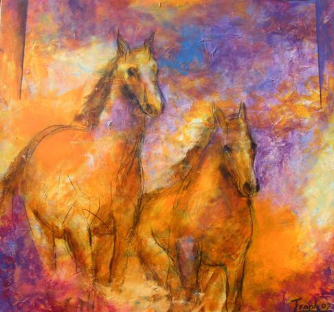Horses Togheter