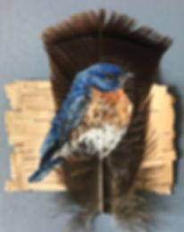 bluebirdf11019.jpg