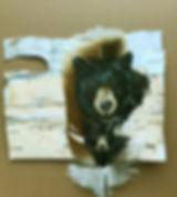 bearsf41619.jpg