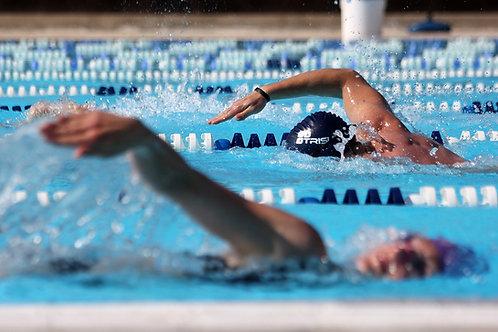 Swim Stimulus - Age Group (16 hours pw)