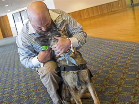 Life-saving partners: Veterans honor their service dogs at Duquesne U. ceremony