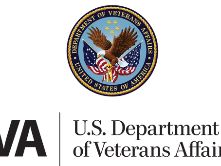 VA and White House launch Veteran suicide-prevention task force