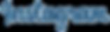 instagram-logo-text-blue-png.png