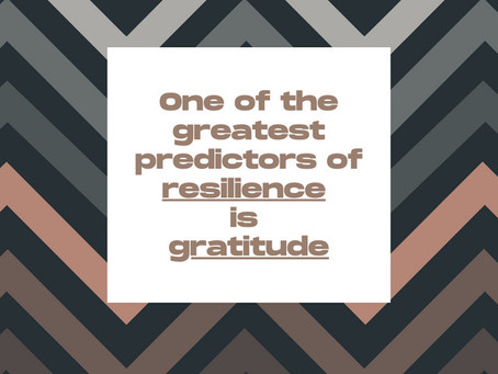 Gratitude, Onions, and Resilience