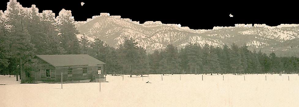 eastdorm-transparent background2.png
