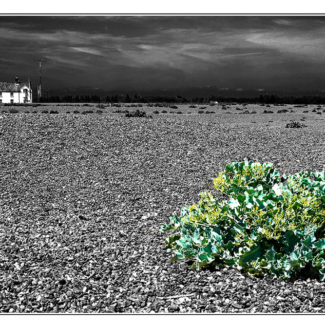 Shingle street revisited