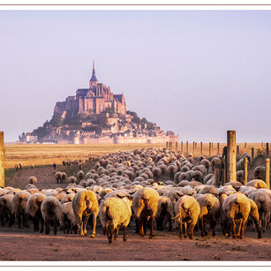 Early Morning, Mont San Michel, France