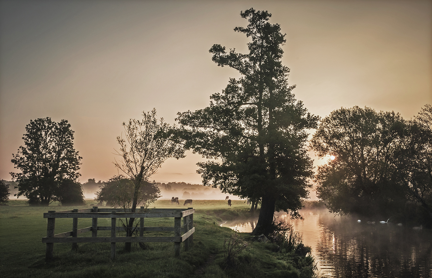 Daybreak on the Stour