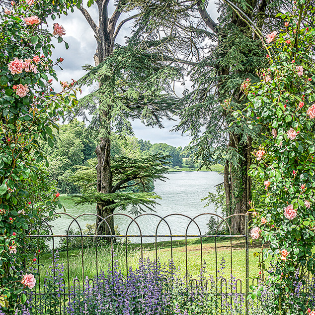The Lake from the Rose Garden