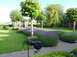 Tuin zomer pad pergola