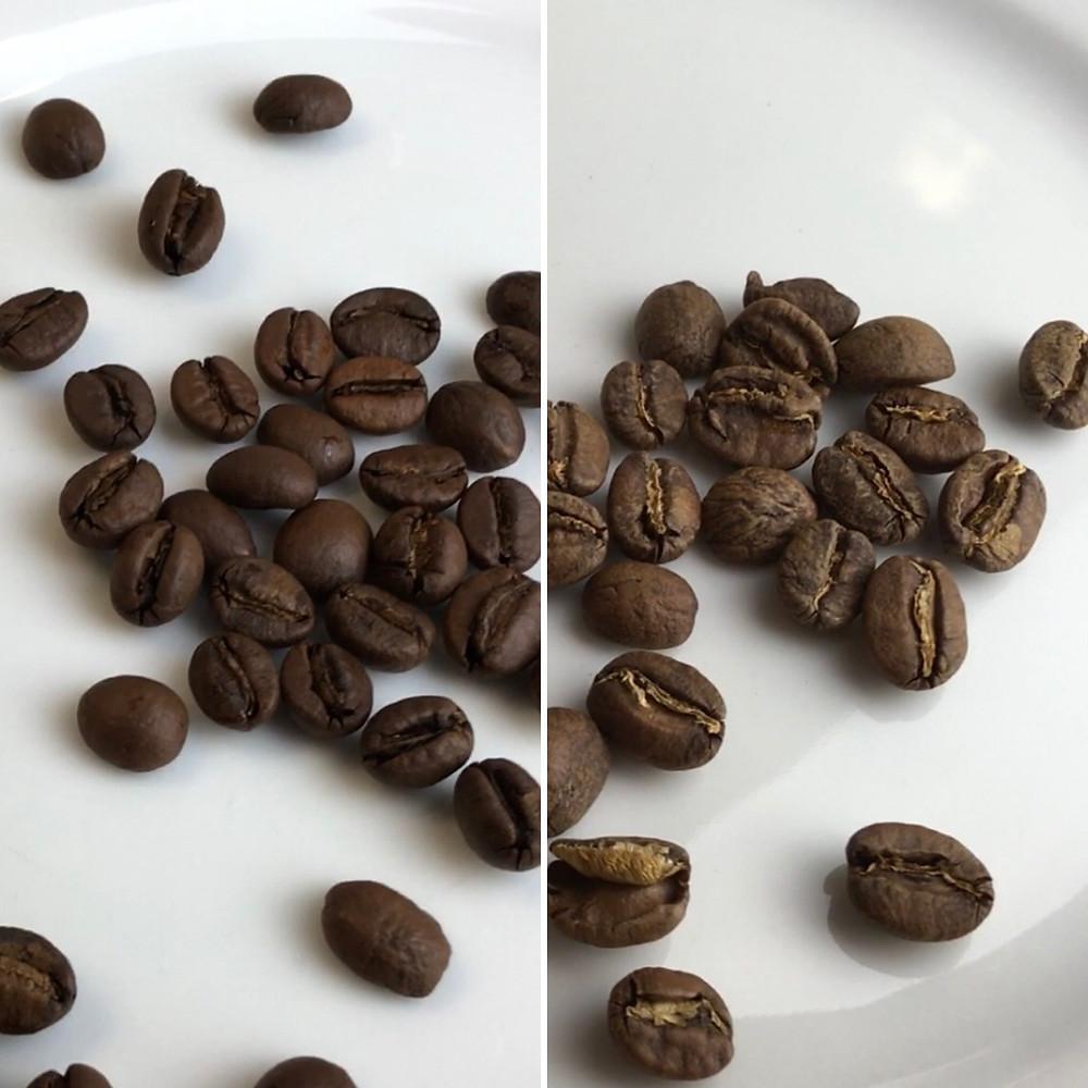 Farbvergleich von Kaffeebohnen einer dunklen und einer hellen Röstung