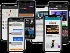 App Screens MULTI 1.png