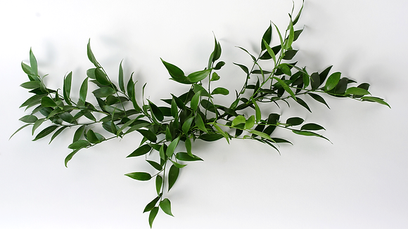 Centerpiece Accents - hand cut greenery