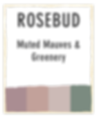 TheBranchPalettes_2020_Text-02.png