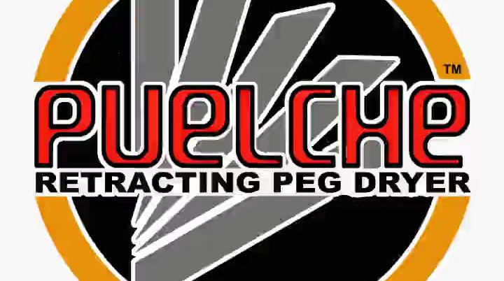 Puelche Dryer Introduction