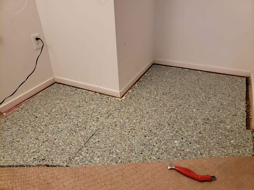 Edibill carpet replacement (6).jpg