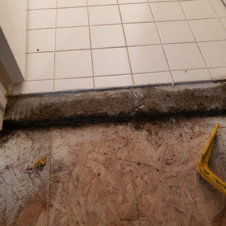 Edibill Water damage remediation (9).jpg