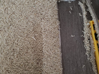 Edibill Carpet repairs (6).jpg