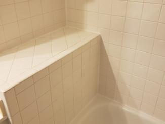 Edibill Bathroom cleaning (9).jpg
