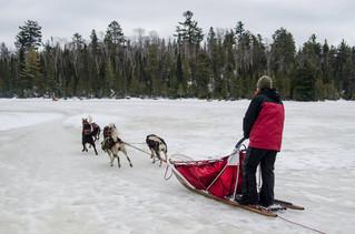 Iditarod...