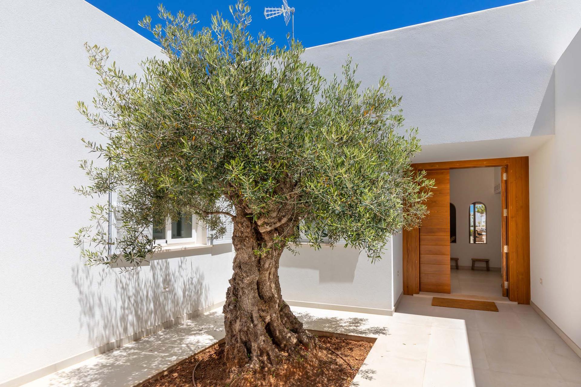 Cala Egos - Mallorca - Islas Baleares