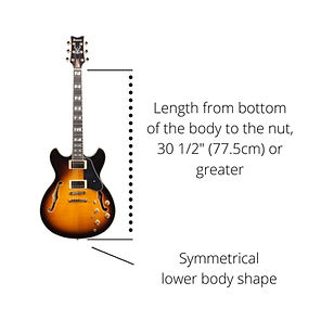 guitar%20specs_edited.jpg