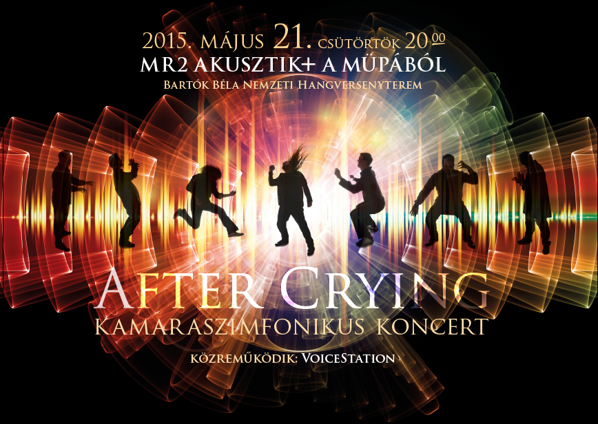 AfterCrying_2015_mupa_poster.png