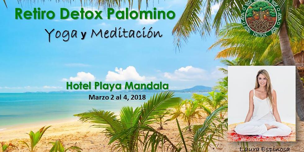 Retiro Detox Palomino Yoga- Meditación y Ángeles