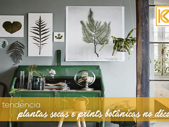 Plantas secas e prints botânicos no decor