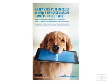 Lola_Pet_para_site_016.jpg