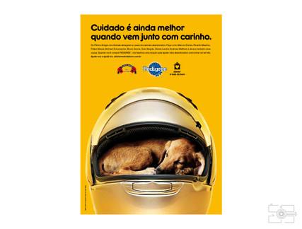 Lola_Pet_para_site_015.jpg