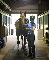 ❤️ this horse. Das Paradox.jpg