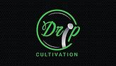 DripCultlogo.png