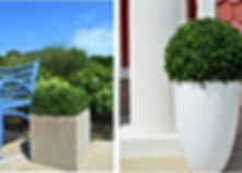 Faux Boxwood Greenery2.jpg
