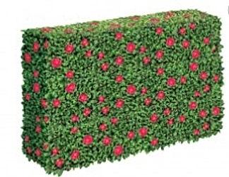 Azelea Topiary Hedge.jpg