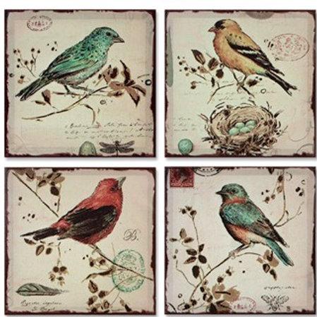Bird Wall Canvas