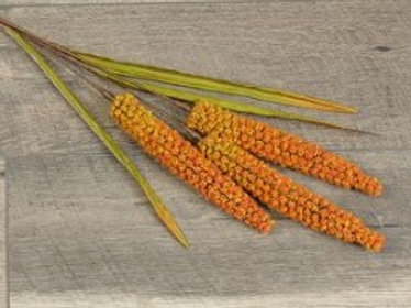 "30"" Light Orange Foxtail Spray"