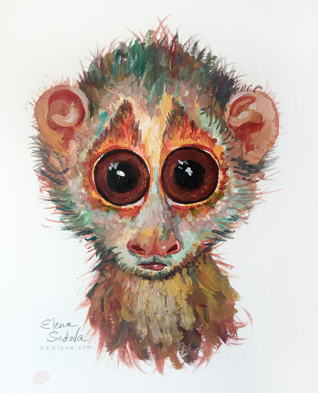 Lemur_s