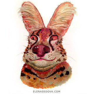 Animal portret - serval.jpg