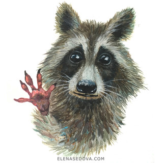 Animal portret - racun.jpg