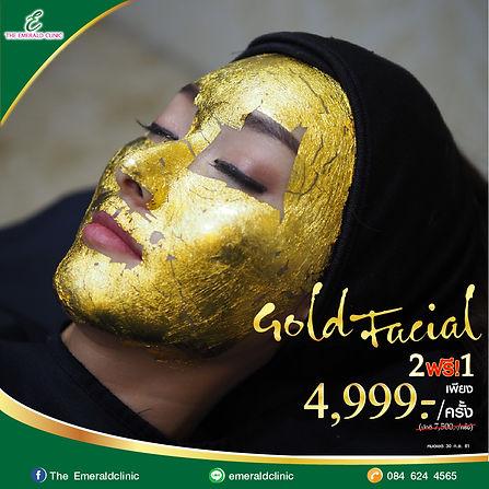 Pro Gold Treatment-02.jpg
